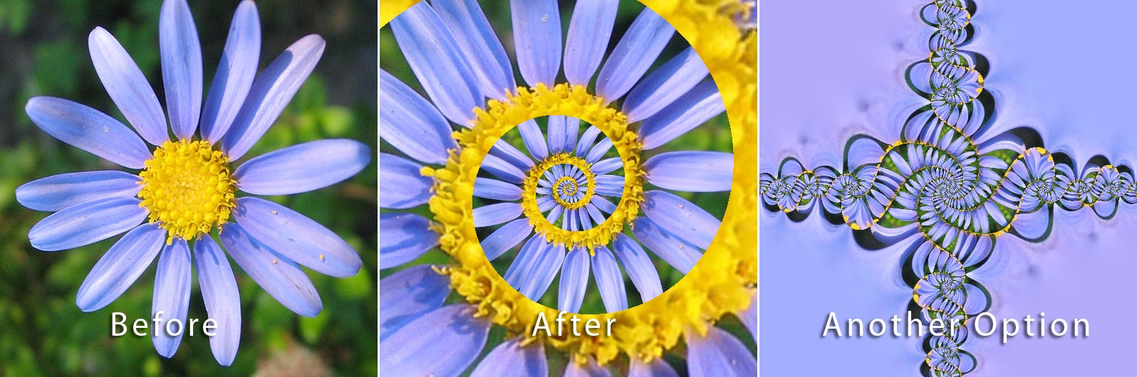 Droste effect photoshop cs5 download