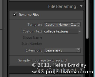 Lightroom_import_dialog_5_things_to_know_4.jpg