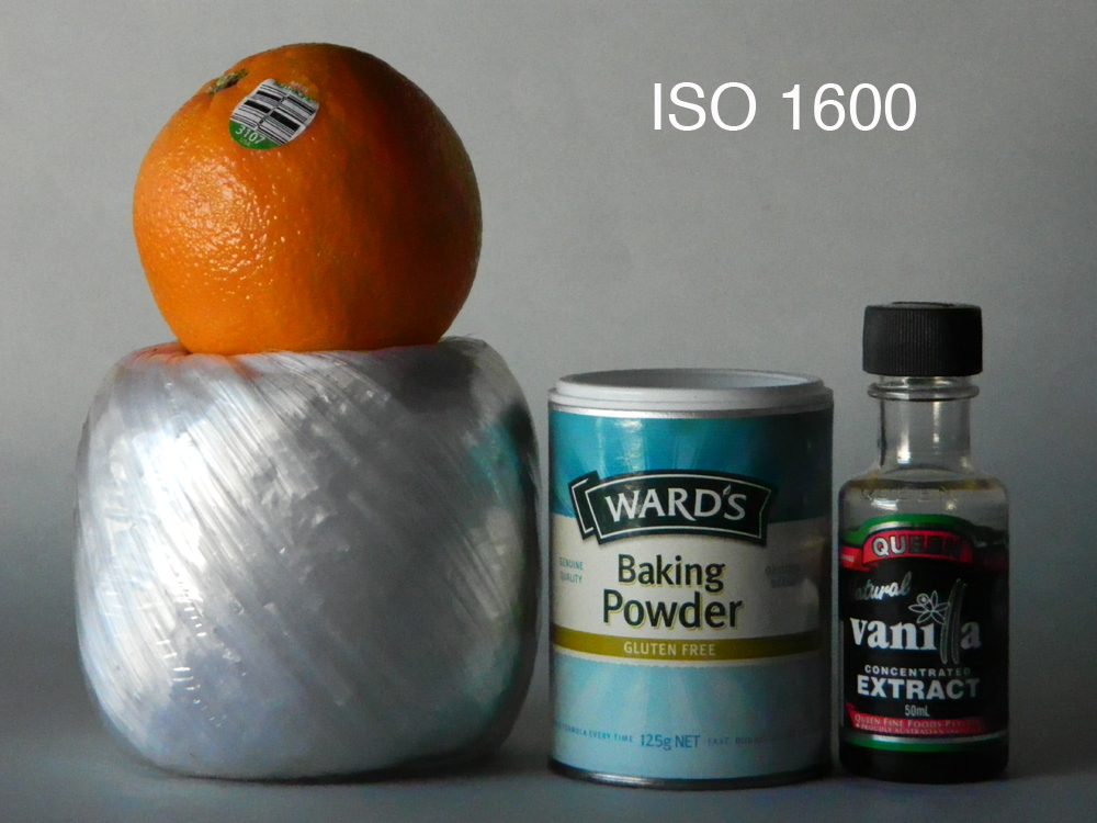 Nikon L120 ISO 1600.jpg