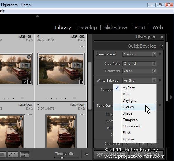 Lightroom_quick_develop_module_4.jpg