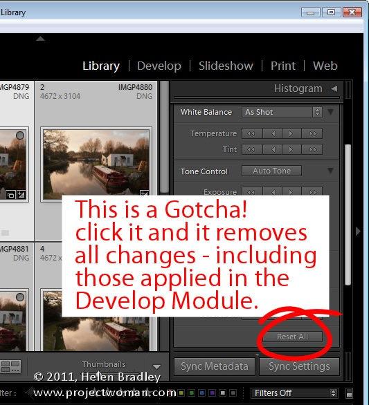 Lightroom_quick_develop_module_6.jpg