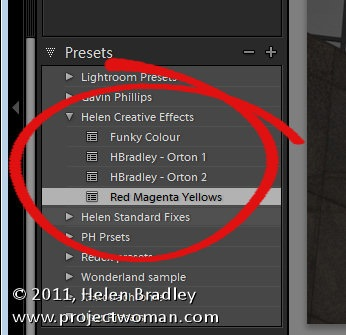 lightroom_presets_tip_4.jpg