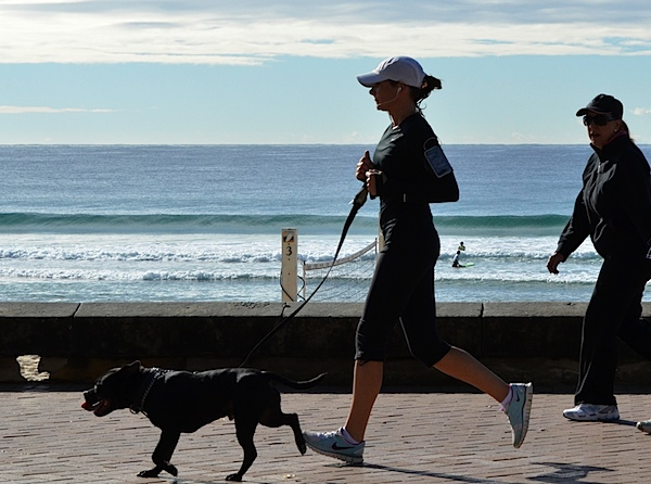 Manly beach runner 2 5.JPG