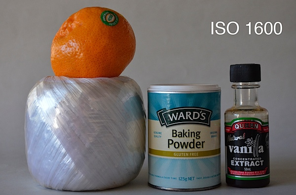 Nikon D5100 ISO 1600.JPG
