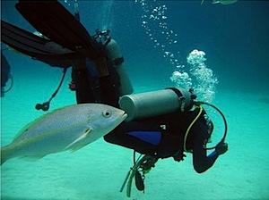 TankPlusFish.jpg